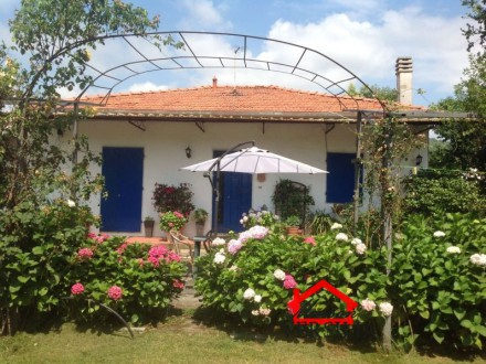 Detached house with large garden in Massa, Castagnola