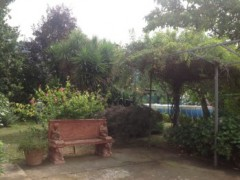 Detached house with large garden in Massa, Castagnola - 6