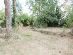 Partaccia, I sold unedifiable land with driveway access - 6
